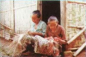 Hanya tiga kilometer dari kota Karanganyar terdapat industri Rumah ...